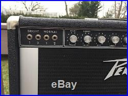1974 Vintage Peavey The Classic (A series) 2x12 Combo Guitar Amp 6L6 Power Tubes