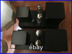 F2a tube mono blocks, custom hand made, circuit based on vintage klangfilm klv204