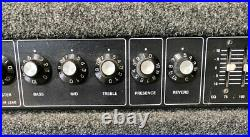 Vintage CARVIN XV-112 100watt Tube Amp